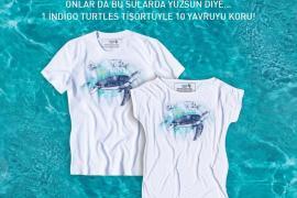 indigoo_mavi_turtles
