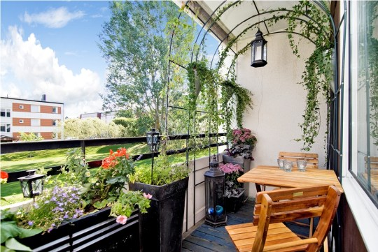 mysig balkong med klätterväxter