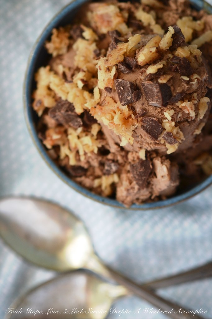 Chocolate Toasted Coconut Frozen Pudding | Faith, Hope, Love, & Luck Survive Despite a Whiskered Accomplice