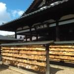 日本で最大の木造仏【安倍の文殊院】