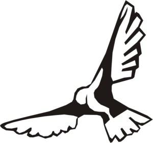 logo bird only
