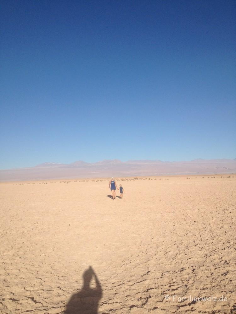 Höhenrausch und Salzkristalle - Wüstenglück in der Atacama