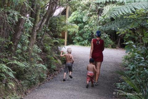 Im Arataki Visitor Centre bei Auckland