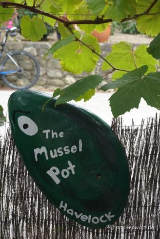 Mussel-Capitol of the world: Havelock
