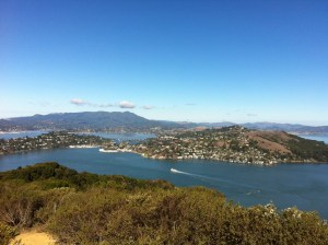 There it is:  Marin County
