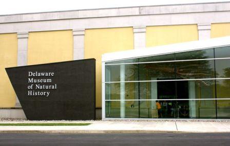 delaware museum natural history