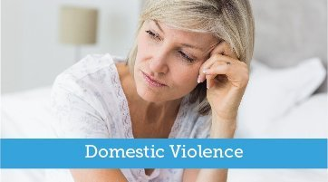Family-Law-Section-Florida-Bar-domestic-violence-committee-header-graphic