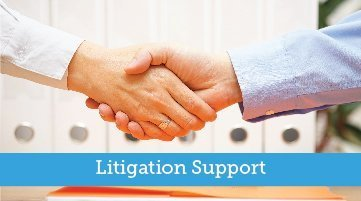 Family-Law-Section-Florida-Bar-litigation-support-committee-header-graphic
