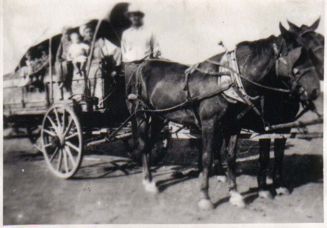 The Adventures of Cowboy Bob: The Covered Wagon Trip and The Train
