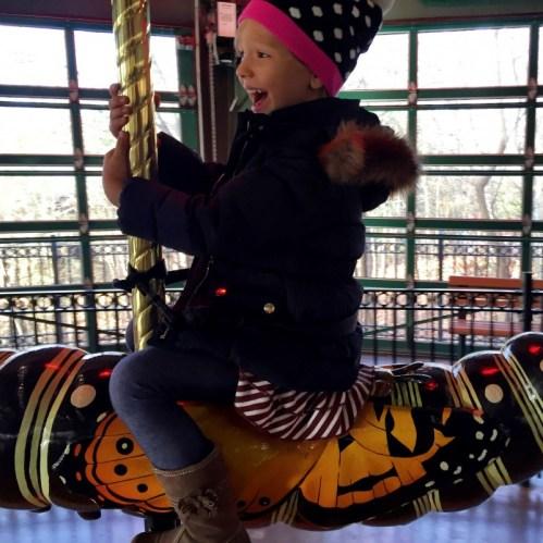 Bronx Zoo Bug Carousel