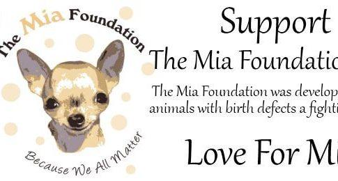 The Mia Foundation