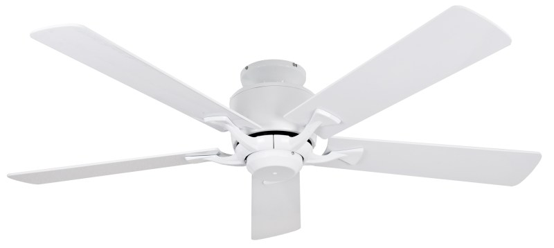 Large Of Ceiling Fan Blades