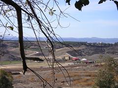 Vista from Falkner Winery