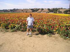 Tom in flower field