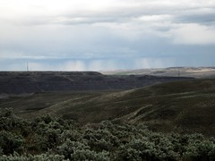 Views from the Ginkgo Petrified Forest State Park near Vantage, Washington