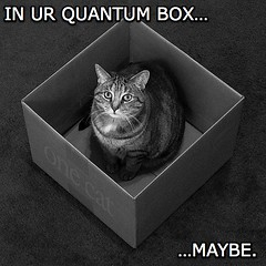 IN UR QUANTUM BOX - MAYBE