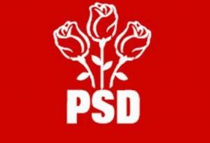 Alegeri pentru o nouă conducere la organizația municipală a PSD