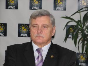 PNL denunță presiunile PSD împotriva ANI și DNA