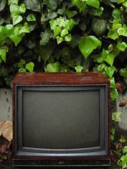 television in the rain