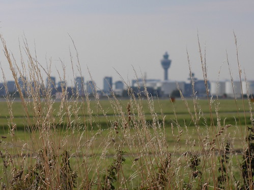 Green look at the #Schiphol skyline #airport #amsterdam
