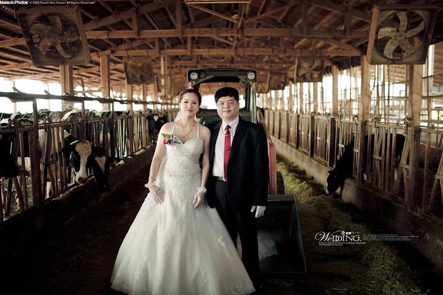 peach-2013-3-7-wedding-3147