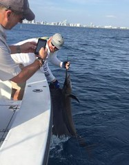 Miami May Charter Fishing Report