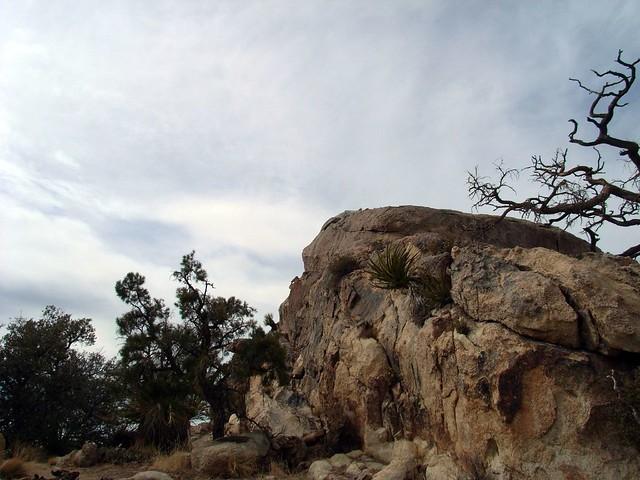 Last Plateau