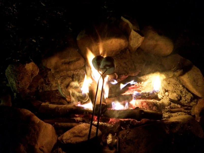 Roasting Marshmallows by the Campfire - Canoe Trip on the Buffalo National River, #VisitArkansas June 12 & 13, 2015
