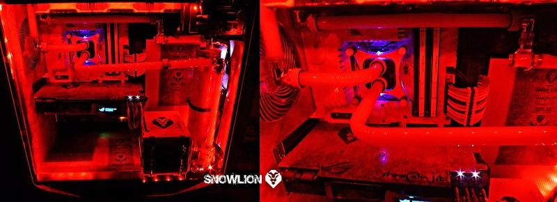 snowlion89