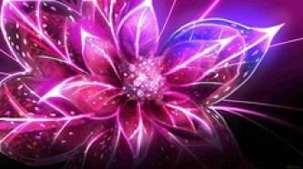 Digital-Art-Flowers1