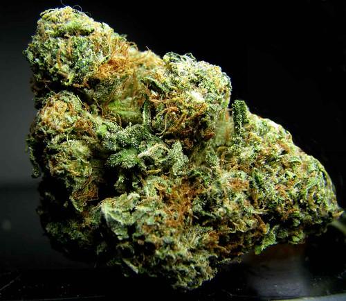 endo marijuana