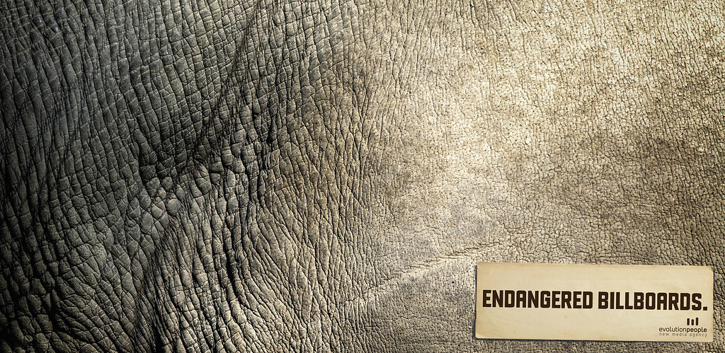 Evolution People New Media Agency - Endangered Billboards 2