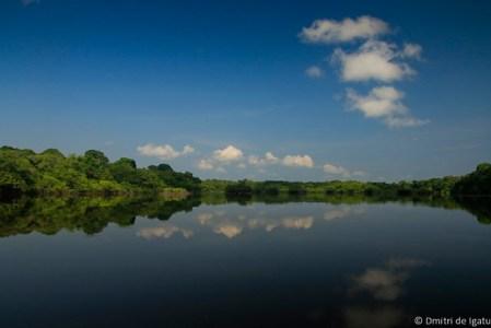 Lagoa do Apacuzinho, Rio Negro.