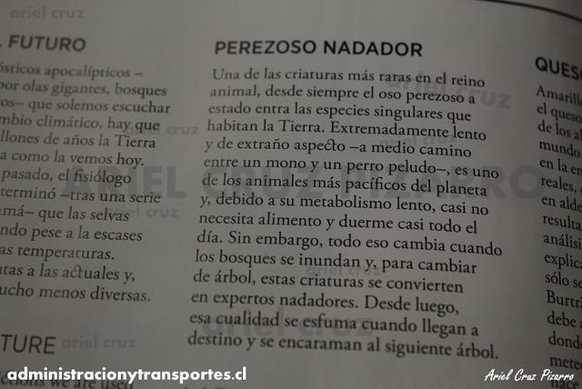 Perezoso Nadador - Revista Sky Airline