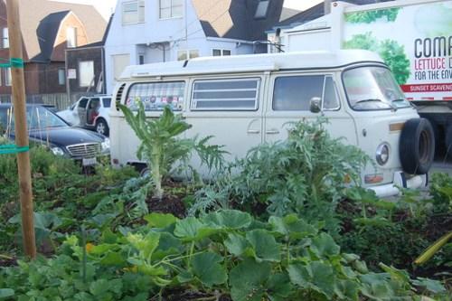 Growing Veggies Too