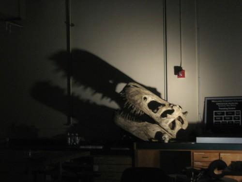Scary dinosaur!