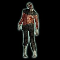 I'm an Ensign Zombie Newbie
