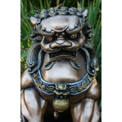 Small Crop Of Chinese Foo Dog