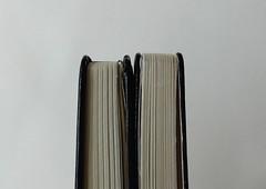 Foray Notebook 02