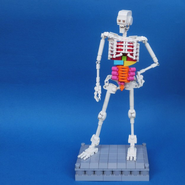 LEGO: Human Skeleton (1/14)