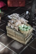 Some of the organic goods on offer. Pictured are chestnuts, zucchini, and dried herbs.