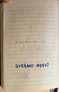 Foray Notebook 10