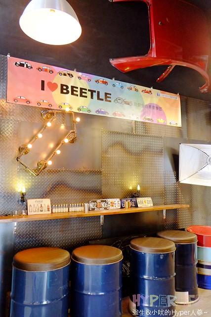 Beetle Land (18)