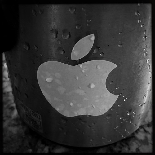 Apple Coffee Thermos