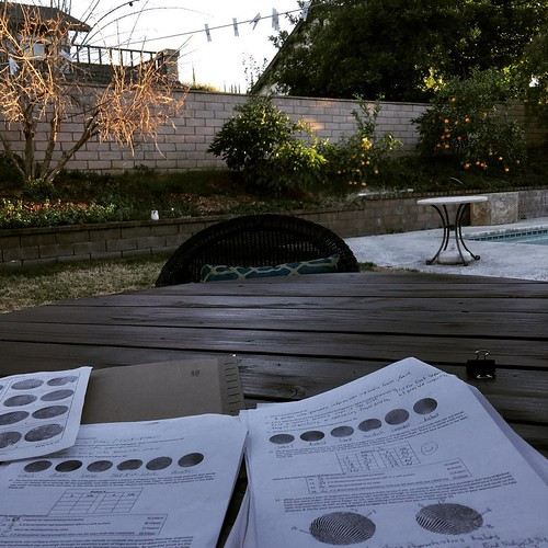 My view: grading in the backyard while most Americans watch the super bowl. I can tell that some team has made a good play when I hear hootin' and hollerin' from neighbor's houses!