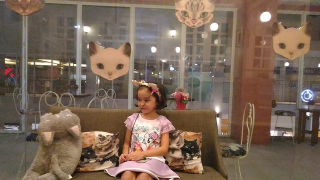 Velvet Friends Cat Cafe