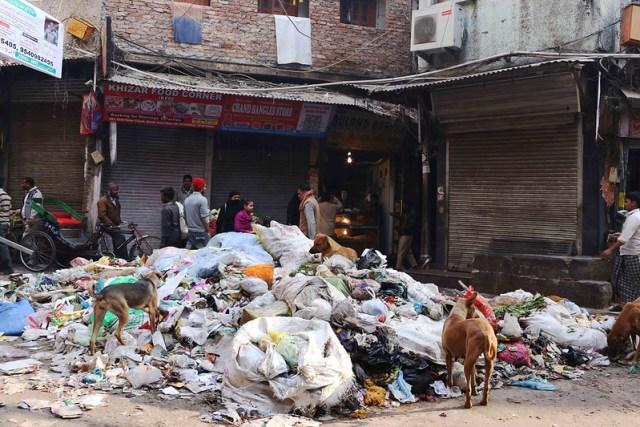 Photo Essay - The Chitli Qabar Urban Art Installation, Old Delhi