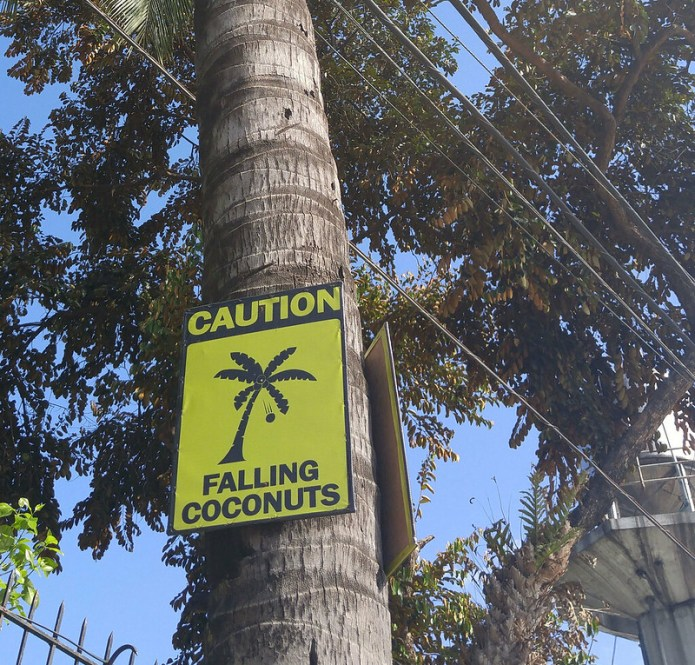 falling coconuts sign 3