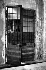 Falegnameria abbandonata / Abandoned Saw Mill VIII