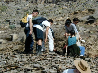 Fossil Hunting - 08